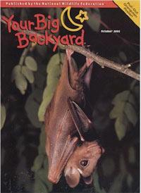 Your Big Backyard Ranger Rick Jr Magazine Subscription
