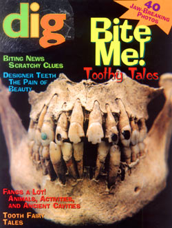Dig Into History Dig Magazine Subscription