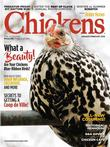 Chickens Magazine Subscription